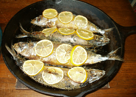 In praise of sardines foodists for Paragon fish oil