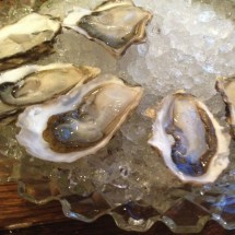 curious-oyster-oysters-crystal-bowl