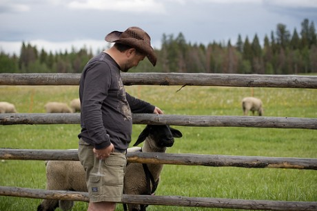 Lessons in animal husbandry on the Cutter Ranch.