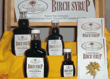sweet-tree-birch-syrup