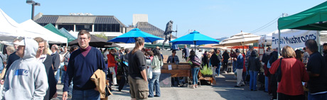 Outdoor market on Saturdays is located all around the Ferry Building.  It's huge!