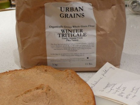 Urban grain Yorkshire