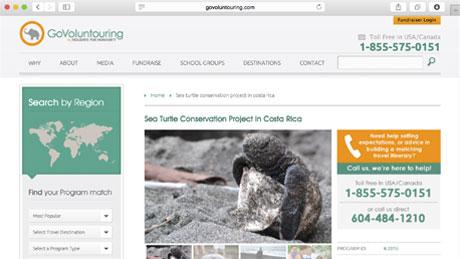 GoVoluntouring-Turtles-Costa-Rica
